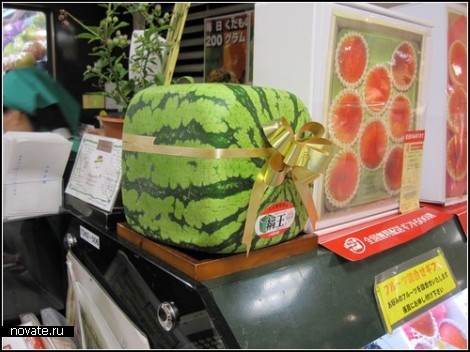 http://kamanime.ru/img/news/cool_watermelons_2.jpg